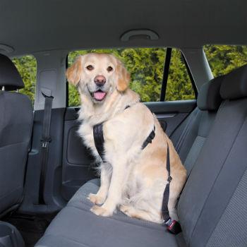 Afbeelding Wandel- en Autoharnas met Gordel voor de hond M
