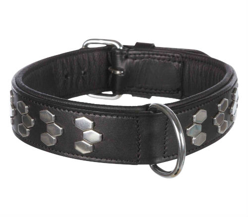 Trixie Active Halsband met Applicaties Zwart 48-55cm - 40mm