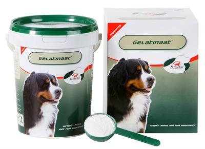 Primeval Artrose Gelatinaat Hond