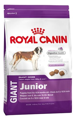 Royal Canin Giant Junior 31