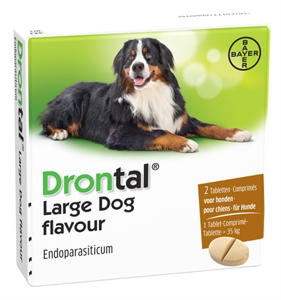 Bayer Drontal Hond Large