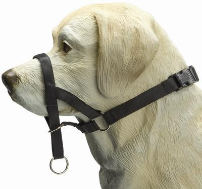 Ipts Dog Control korte Neus Zwart