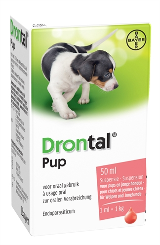 Bayer Drontal Puppy