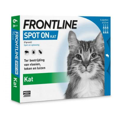 Frontline Kat Spot-On