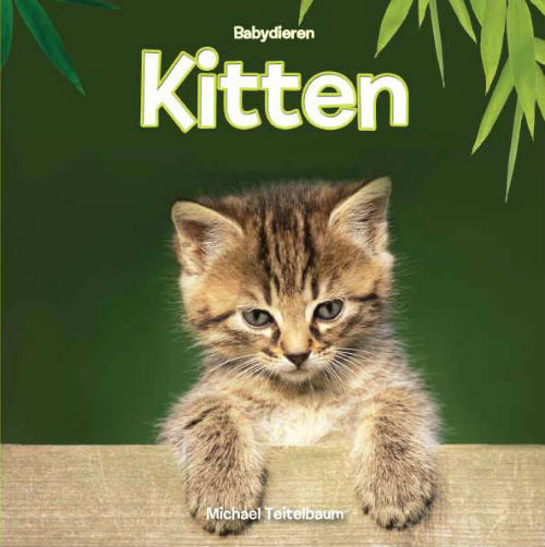 Babydieren Kitten