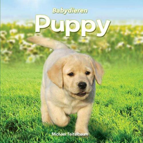Babydieren Puppy