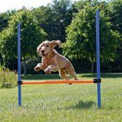 Trixie Dog Activity Agility Horde Blauw / Oranje 123x115x3cm