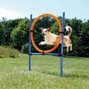 Trixie Dog Activity Agility Ring Blauw / Oranje 65x3x115cm