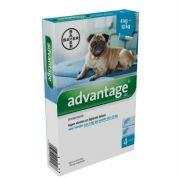 Bayer Advantage 100 Hond 4 pip (> 4kg)
