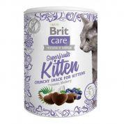 Brit Care Snack Superfruits Kitten Kat 100gr